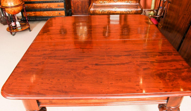 Antique William IV Mahogany Dining Table and 10 Chairs, 19th Century 1