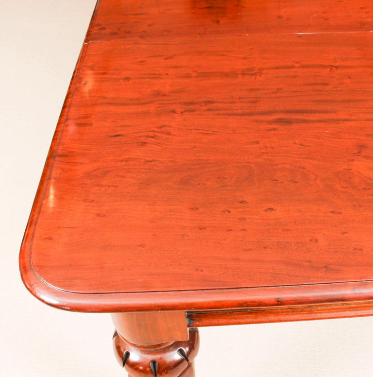 Antique William IV Mahogany Dining Table and 10 Chairs, 19th Century 2
