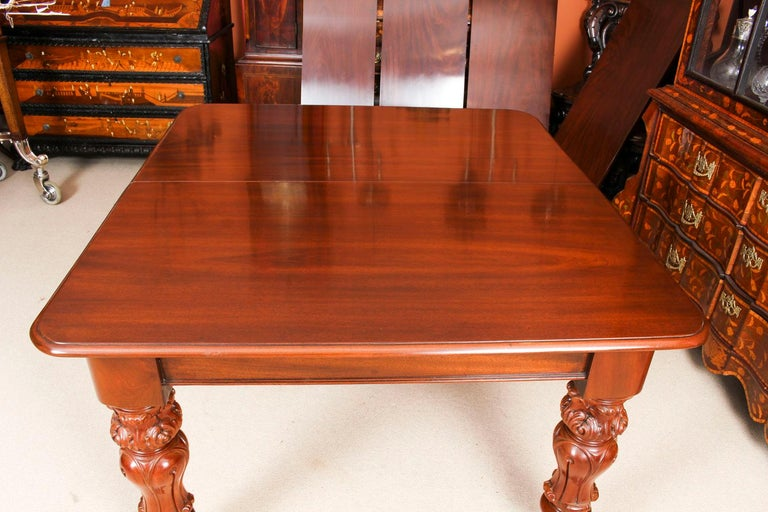 Antique William IV Mahogany Dining Table 19th Century & 12 Dining Chairs 6
