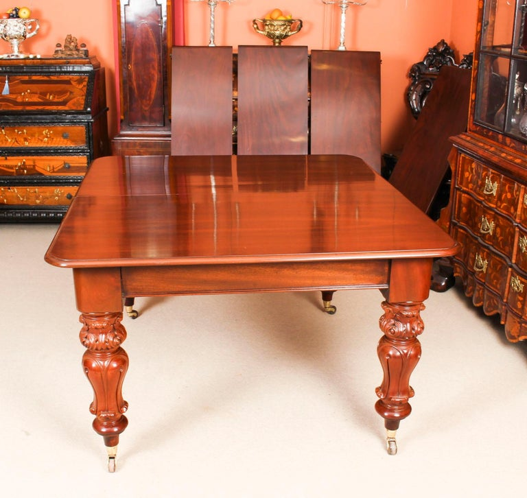 Antique William IV Mahogany Dining Table 19th Century & 12 Dining Chairs 3
