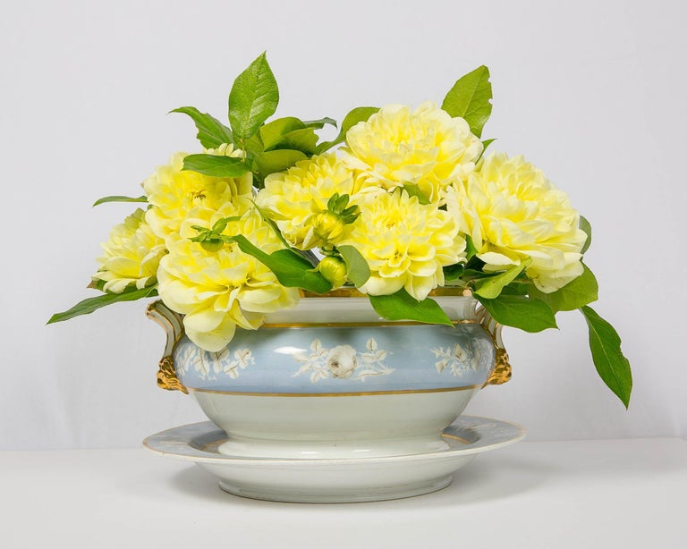 We are pleased to offer this standout Worcester soup tureen and stand painted in baby blue and decorated with white roses. The tureen is further decorated on the cover with lavish gold gilding which also decorates the finial and the handles. It was