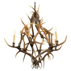 Antler Chandelier with 6 Lights