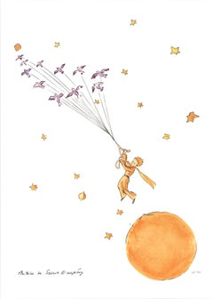 The Little Prince and the Wild Birds