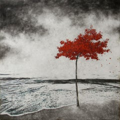 Toutes Les Feuilles ne Savent Pas Nager - Not All Leaves Can Swim