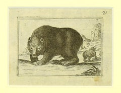 Bear - Original Etching by Antonio Tempesta - 1610