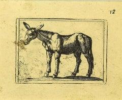 Mule - Original Etching by Antonio Tempesta - 1610s