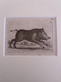 The Cinghi - Original Etching by Antonio Tempesta - 1610