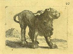 The Lion - Original Etching by Antonio Tempesta - 1610s