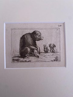 The Monkey - Original Etching by Antonio Tempesta - 1610