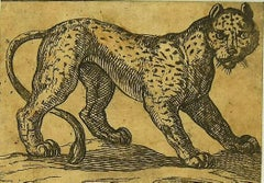 The Tiger - Original Etching by Antonio Tempesta - 1610s