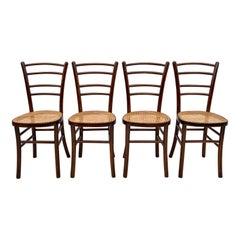 Antonio Volpe Mid-Century Modern Italian Curved Beech Dining Chairs, 1940s
