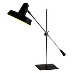 Anvia Table Lamps
