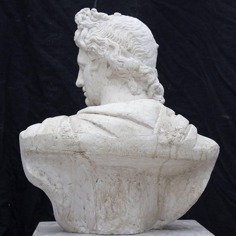 Other Apollo Belvedere Sculpture For Sale