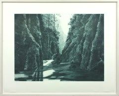 Divide black and white soft ground etching and aquatint by April Gornik