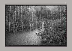 Rio Negro (detail 1), The Amazon, Brazil