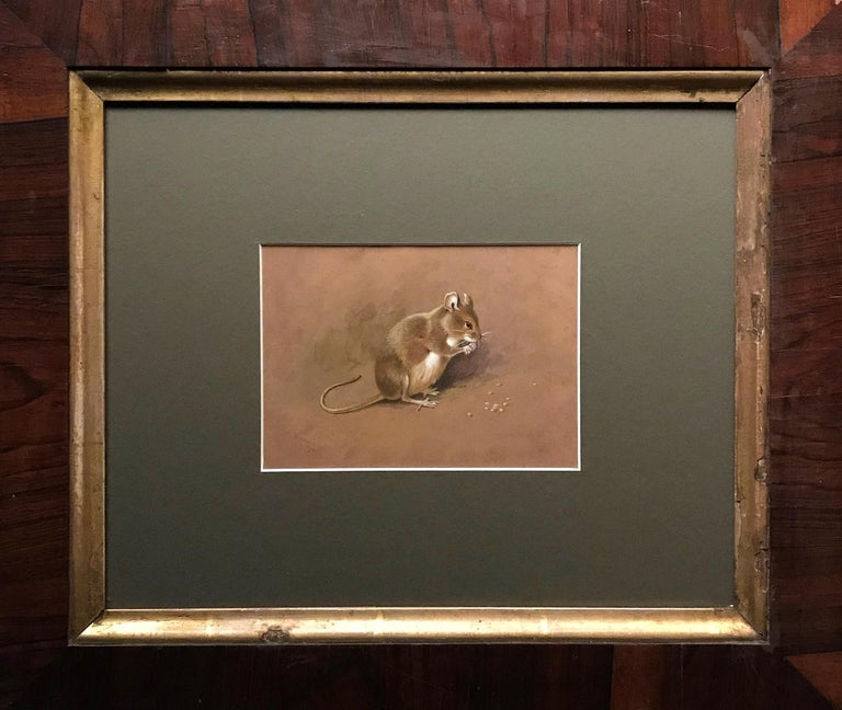 A field mouse - Painting by Archibald Thorburn