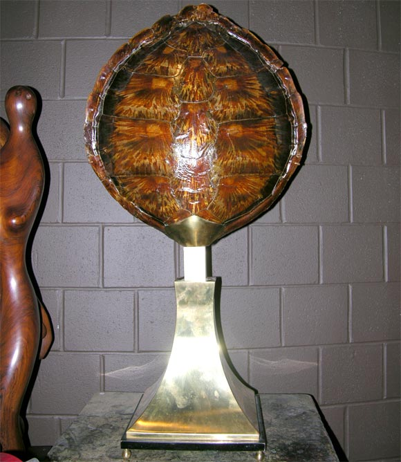 French Tortoise Shell Centerpiece For Sale