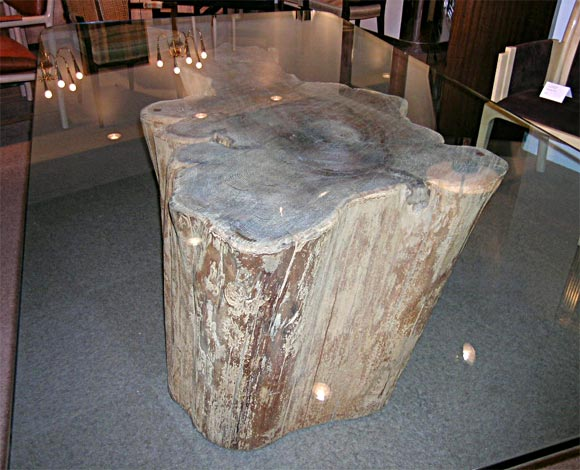 Dining table with tree trunk base by michael taylor at 1stdibs for Tree trunk dining room table