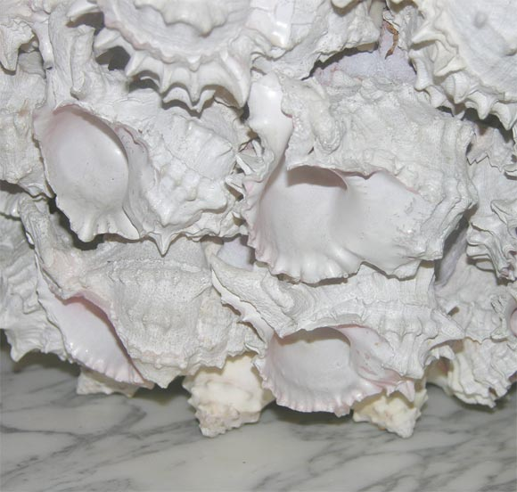 Shell Encrusted Flower Pot In Excellent Condition For Sale In Stamford, CT