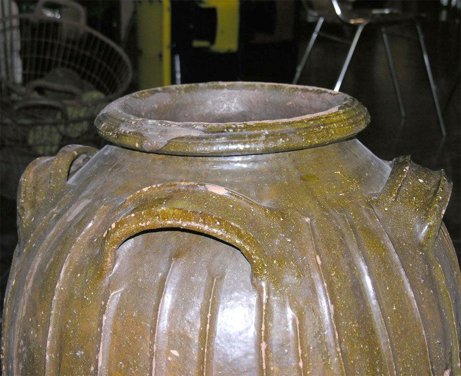 19th Century French Walnut Oil Vessel 5