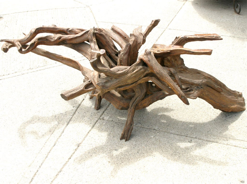 Driftwood Coffee Table Base At 1stdibs