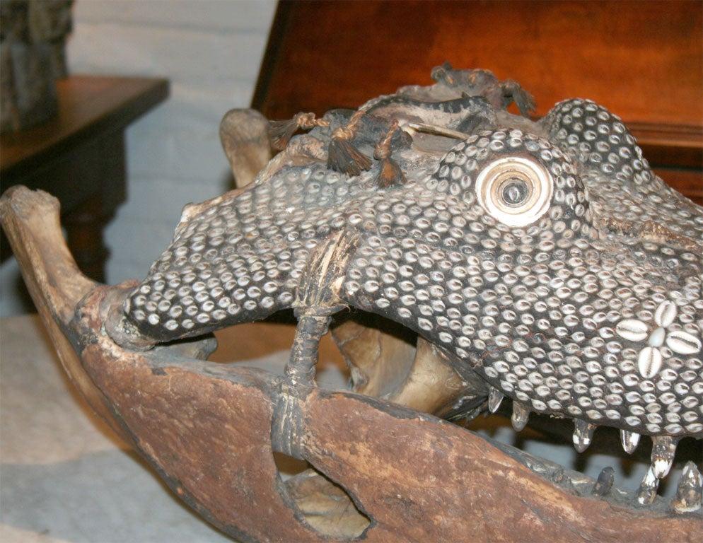 Papua New Guinean Rare Inlaid Crocodile Head from Papua New Guinea