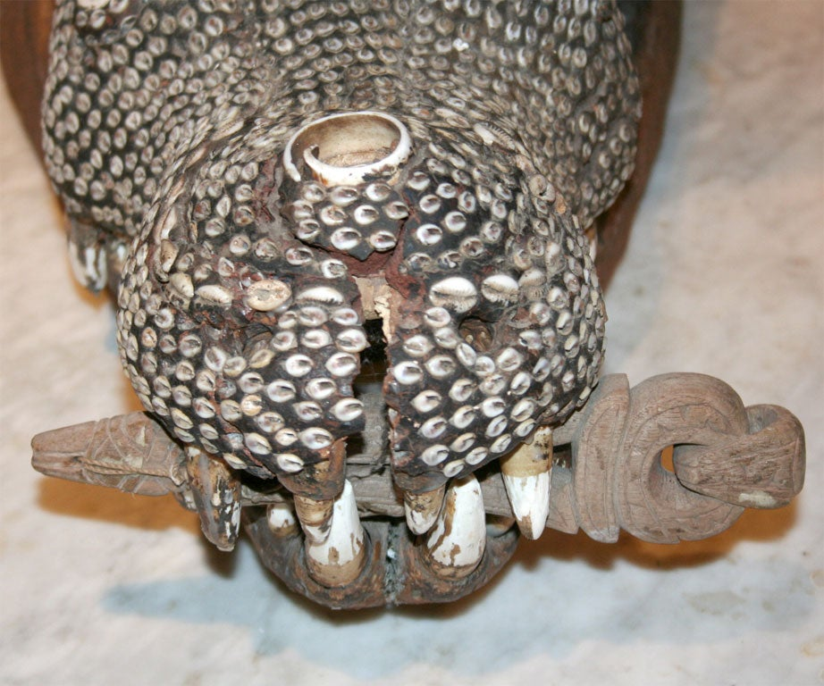 Wood Rare Inlaid Crocodile Head from Papua New Guinea