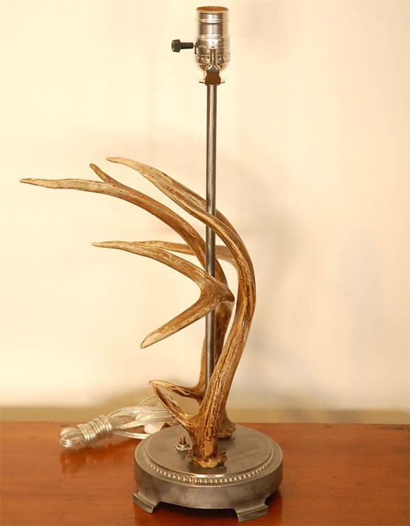 antler table lamp for sale at 1stdibs. Black Bedroom Furniture Sets. Home Design Ideas
