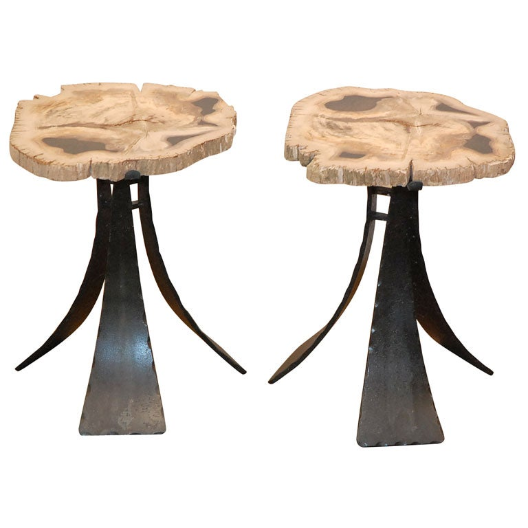 Hand Wrought Iron And Petrified Wood Tables At 1stdibs