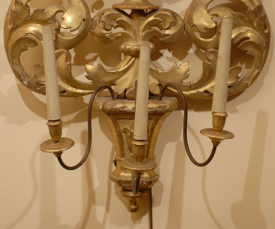 Pair Impressive Italian Gilt-wood Wall Sconces, c. 1800 at 1stdibs