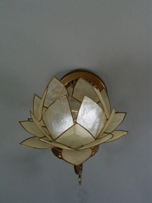 Half Shell Wall Lights : Pair Capiz shell Flower Sconces at 1stdibs