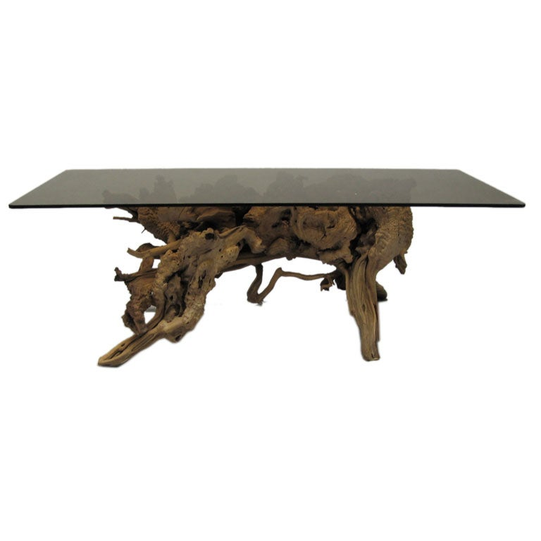 Primordial Cypress Root Coffee Table At 1stdibs