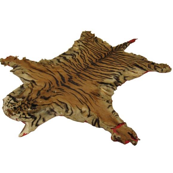 Tiger Skin Rug At 1stdibs