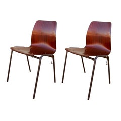 Pair of French 50's Chairs by Andre Bloc