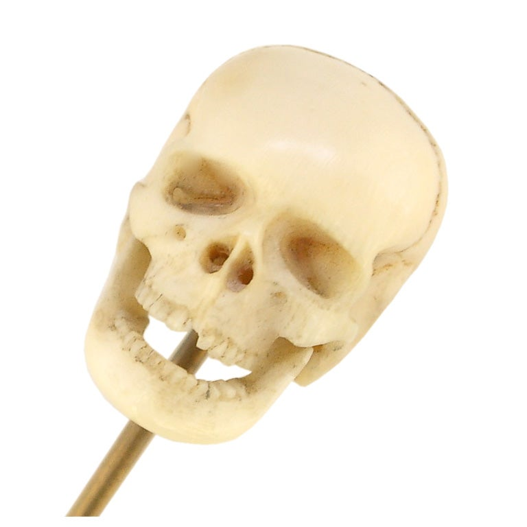 ivory skull stick pin 19th century at 1stdibs