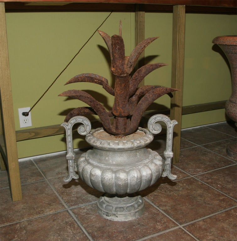 Produced by the Val d'Osne Foundery, with added decorative iron aloe leaves.