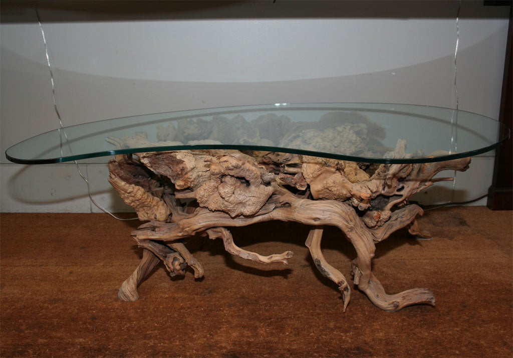 Driftwood Coffee Table With Biomorphic Shaped Glass Top At 1stdibs