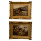 Pair of sporting dog oil paintings