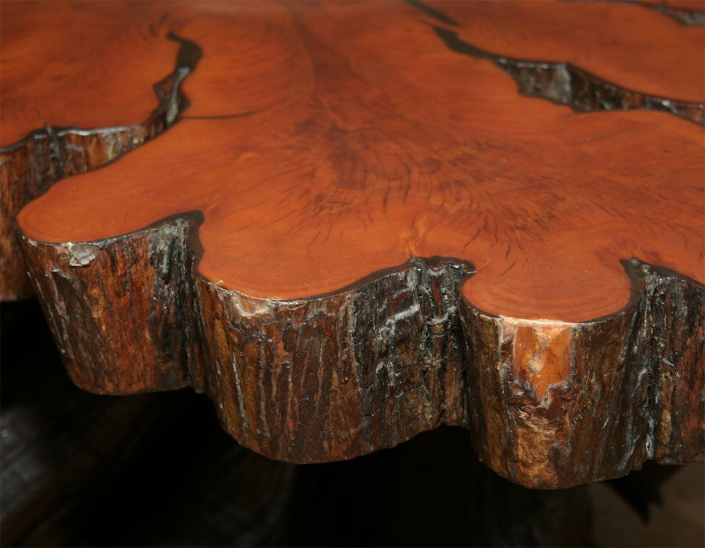 IMG 8991 Vintage Trunk Coffee Table Vintage Cross Sectioned Tree Trunk And Root Coffee Table At Stdibs
