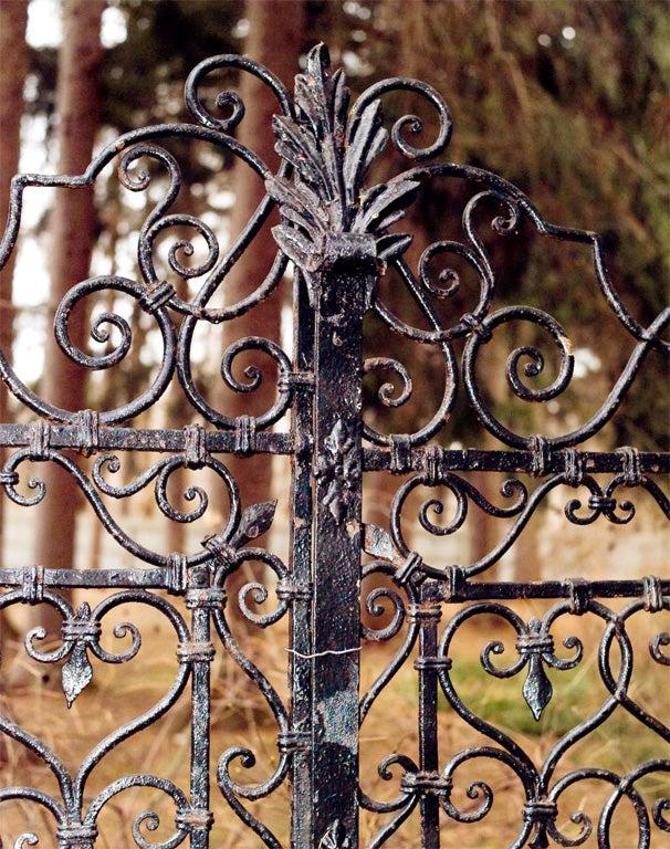 Wrought-iron Gates image 2