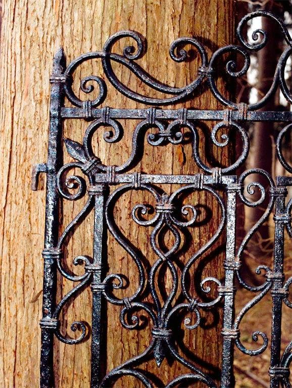 Wrought-iron Gates image 3
