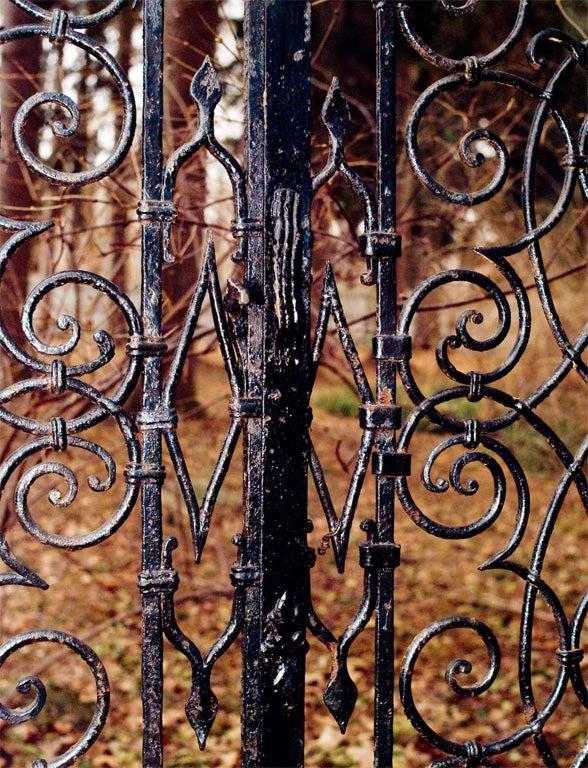 Wrought-iron Gates image 4