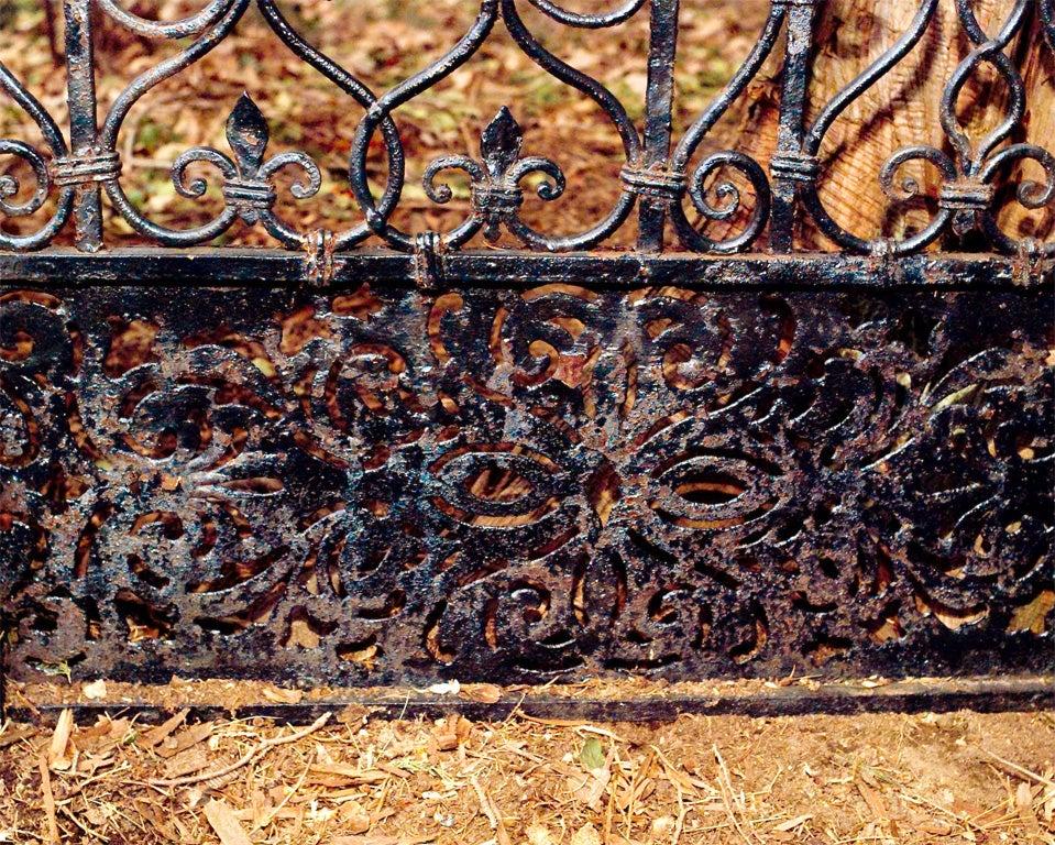 Wrought-iron Gates image 5