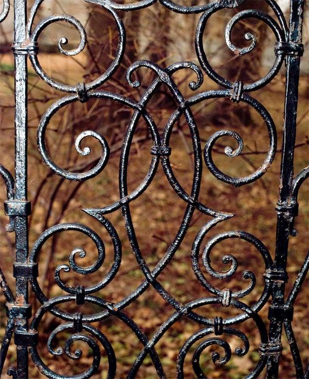 Wrought-iron Gates image 6