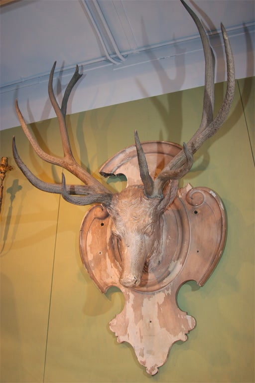 Decorative mounted stag 39 s head at 1stdibs - Decorative stags head ...