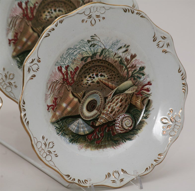 19th C. English Dessert Set With Shells For Sale 3