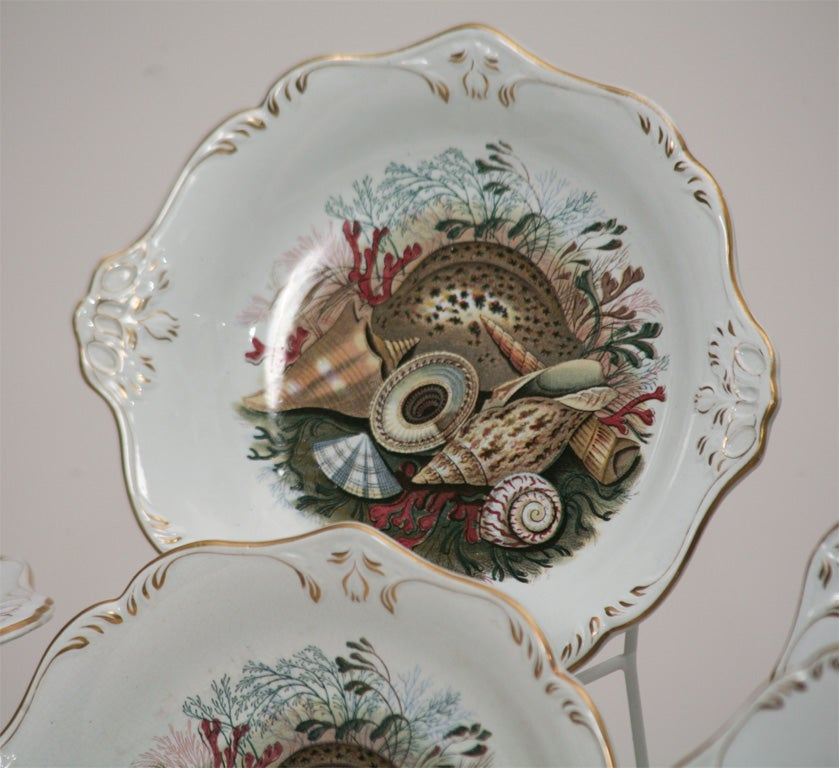 19th C. English Dessert Set With Shells For Sale 4