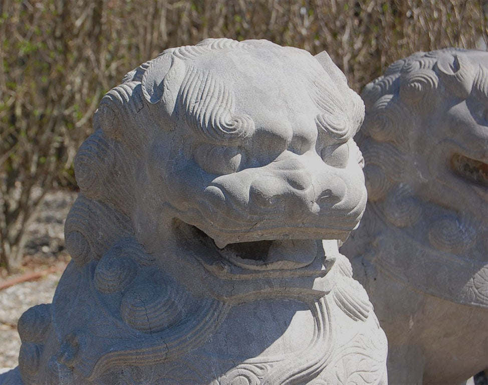 Pair of Carved Stone Chinese Foo Dogs 9