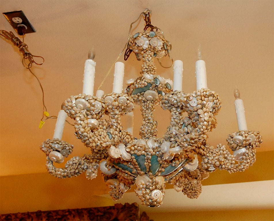 Unique Seashell Chandelier at 1stdibs