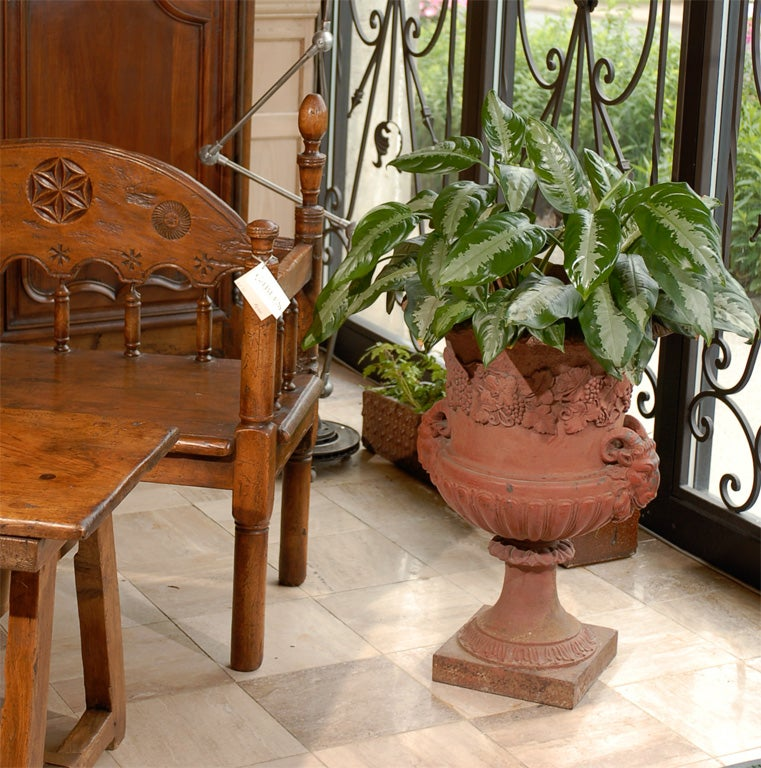 Because of the color, this very large urn appears to be terra-cotta at first glance, but it is actually cast iron.  It is decorated with grape vines, rams heads and has acanthus leaves around the rim and on the base.  It is large enough to fill a